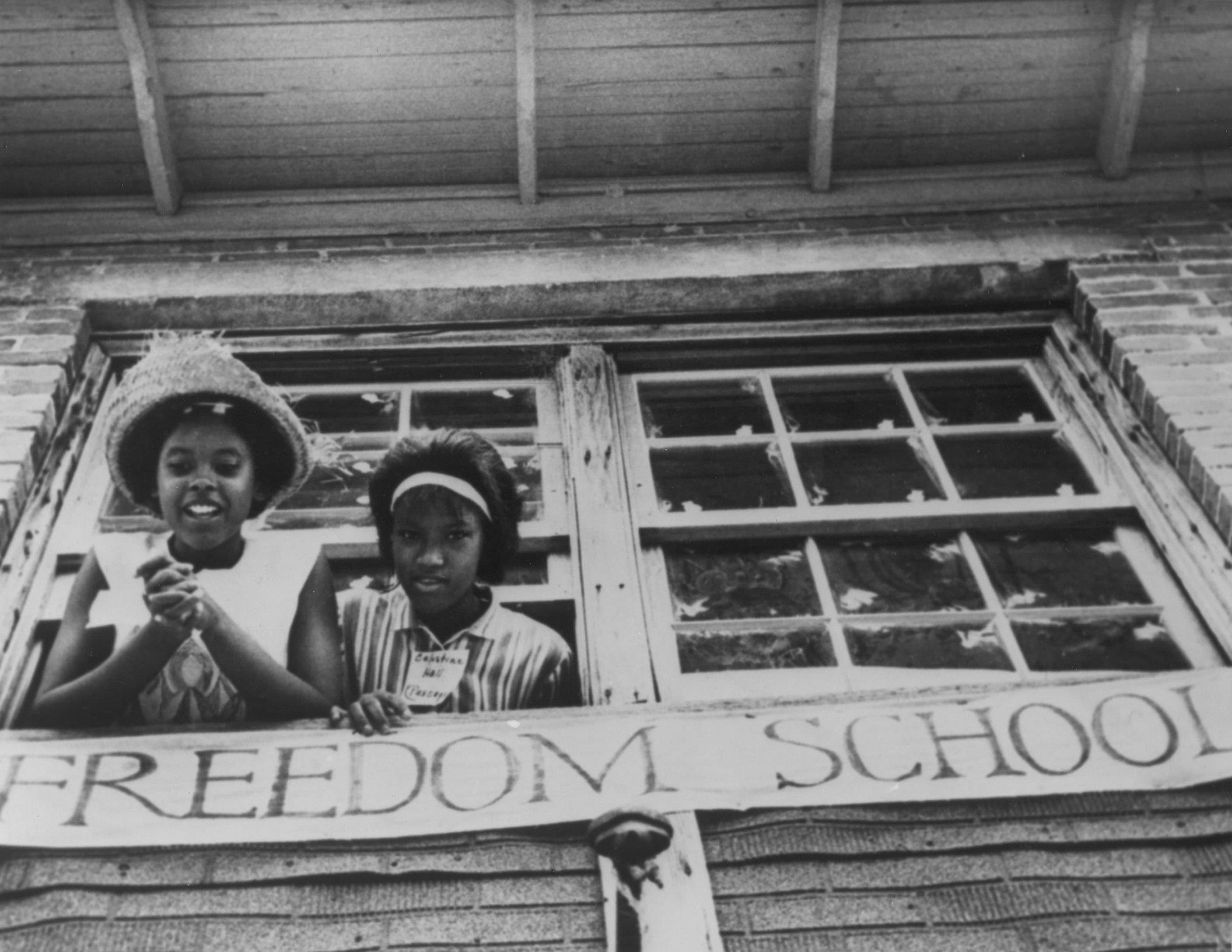 هل الحرية المطلقة دون أيّة حدود هي ما نريده فعلًا؟