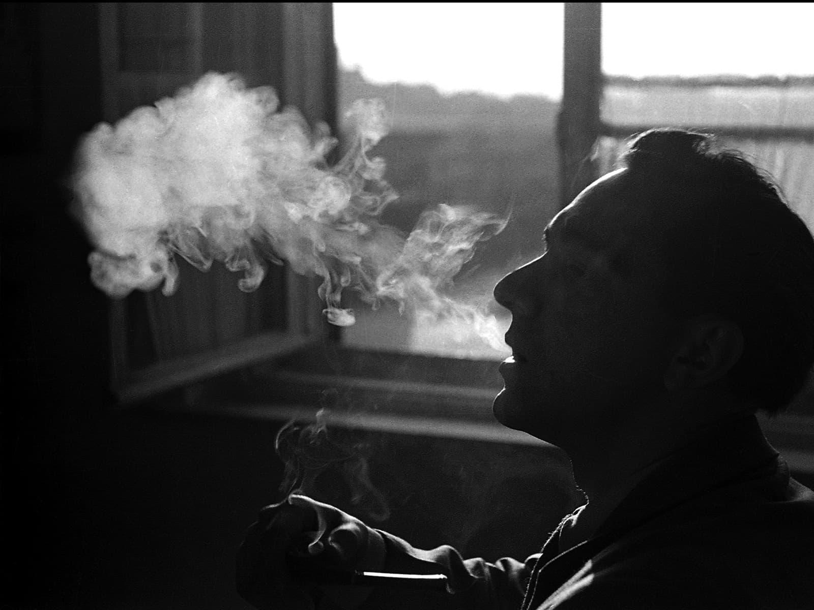 الحرب على التبغ