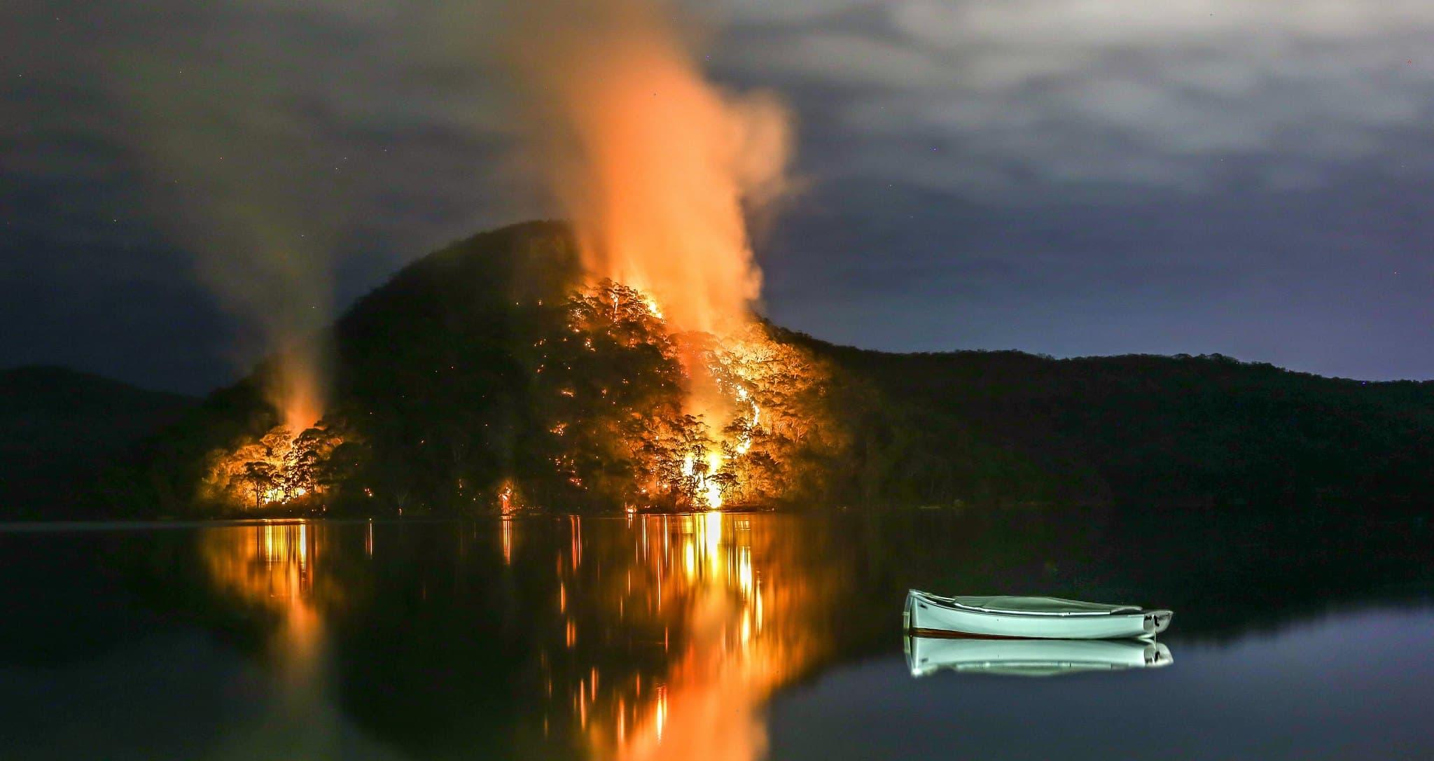 التغير المناخي في أستراليا: ماذنب الإبل؟