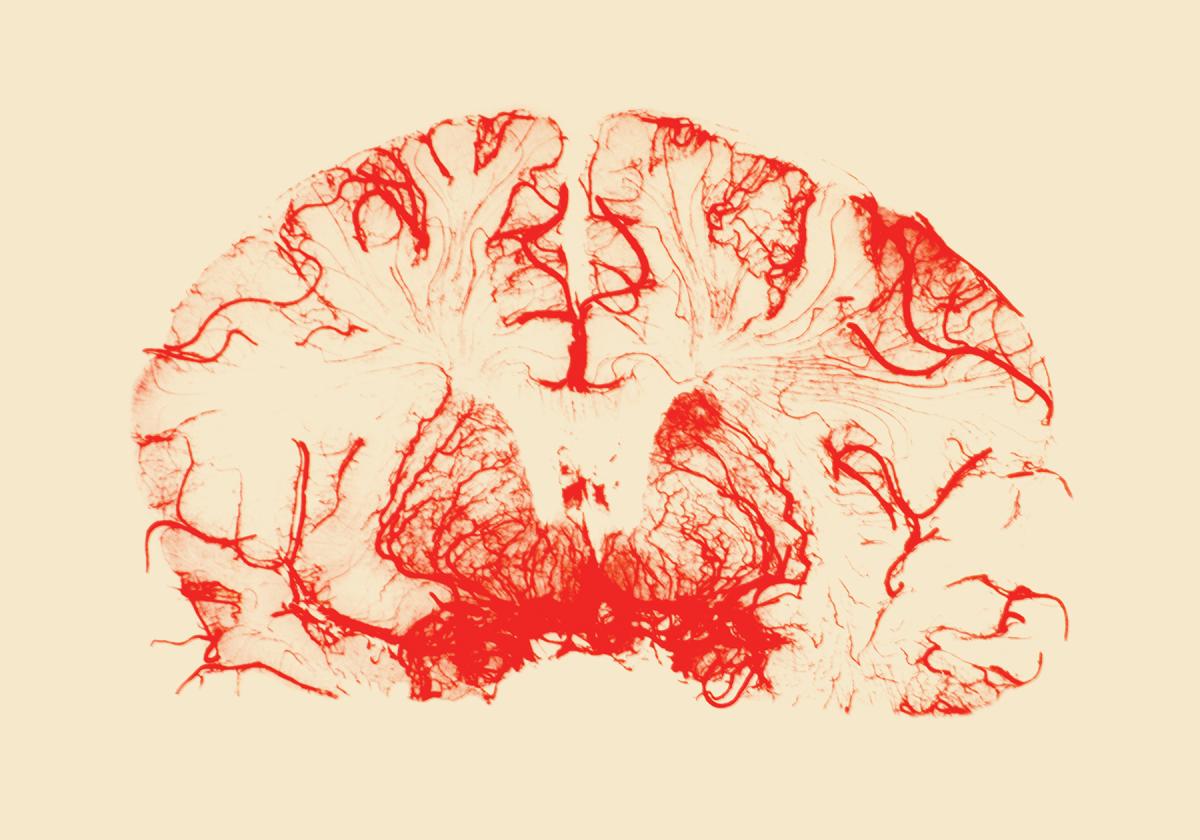 الأمراض العصبية واختراق الذات في الأدب